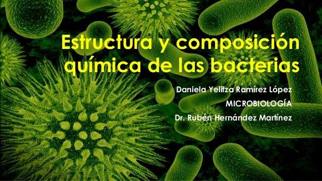 Estructura Y Composición Química De Las Bacterias