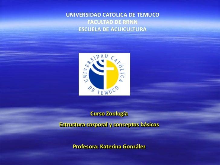 UNIVERSIDAD CATOLICA DE TEMUCO         FACULTAD DE RRNN      ESCUELA DE ACUICULTURA            Curso ZoologíaEstructura co...