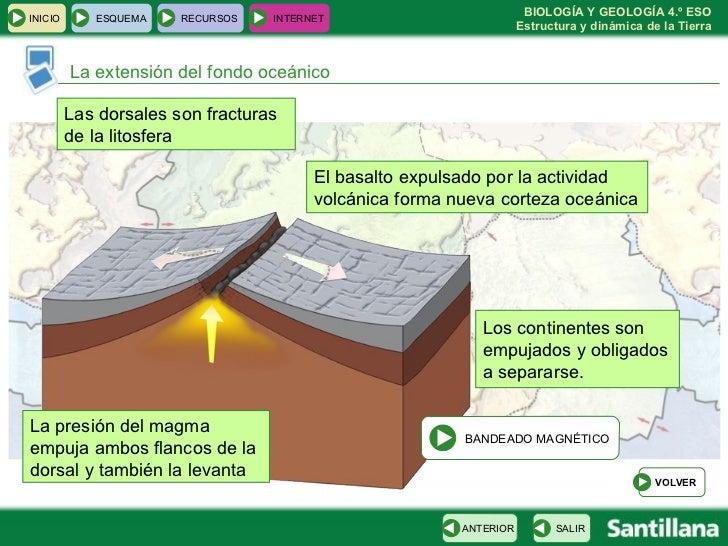 La extensión del fondo oceánico Las dorsales son fracturas de la litosfera  El basalto expulsado por la actividad volcánic...