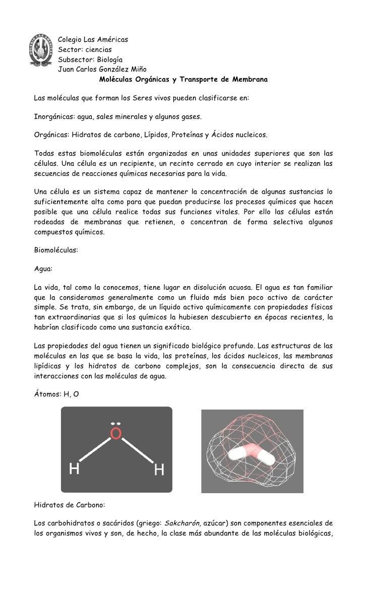 Colegio Las Américas         Sector: ciencias         Subsector: Biología         Juan Carlos González Miño               ...