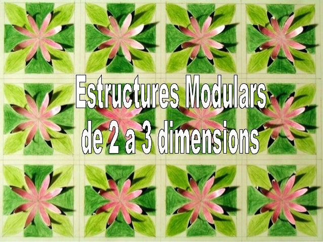 Estructures Modulars 2 a 3 dimensions