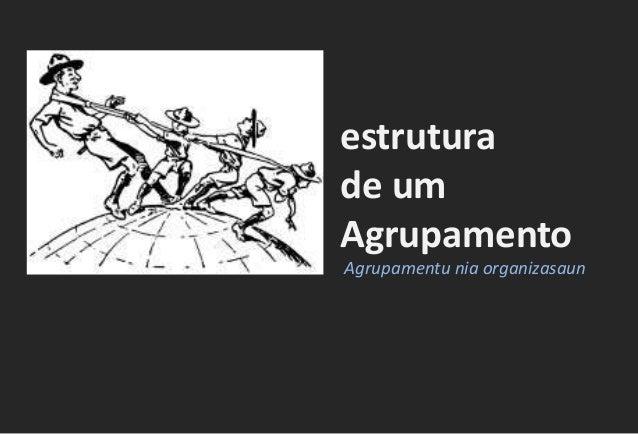 estrutura de um Agrupamento Agrupamentu nia organizasaun