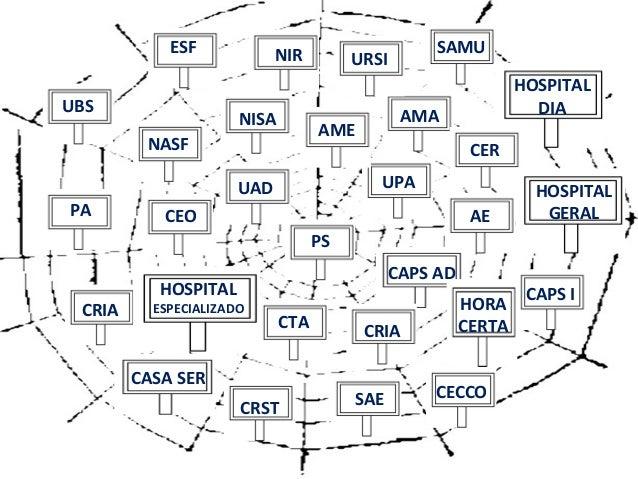 Estrutura Organizacional Dos Serviços De Saúde Redes De