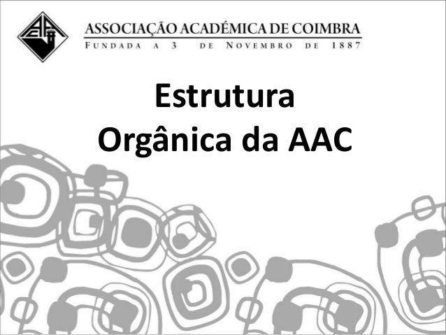EstruturaOrgânica da AAC