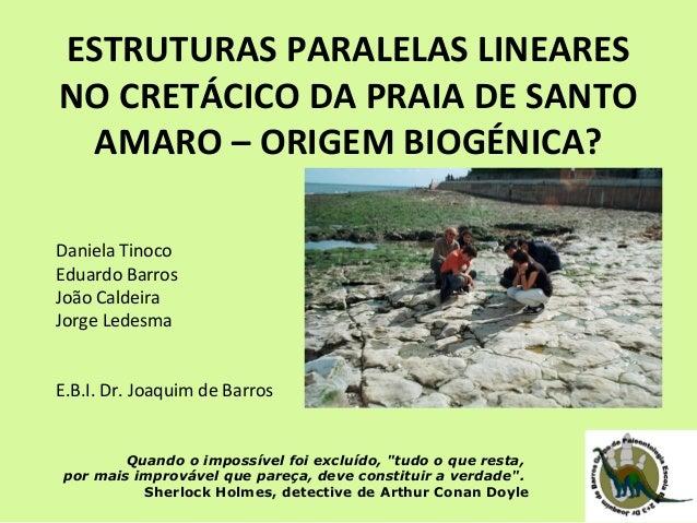 ESTRUTURAS PARALELAS LINEARES  NO CRETÁCICO DA PRAIA DE SANTO  AMARO – ORIGEM BIOGÉNICA?  Daniela Tinoco  Eduardo Barros  ...