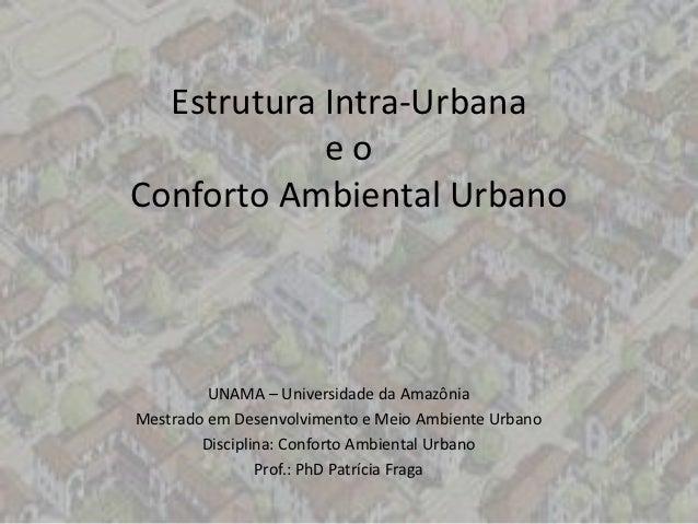Estrutura Intra-Urbana            eoConforto Ambiental Urbano         UNAMA – Universidade da AmazôniaMestrado em Desenvol...