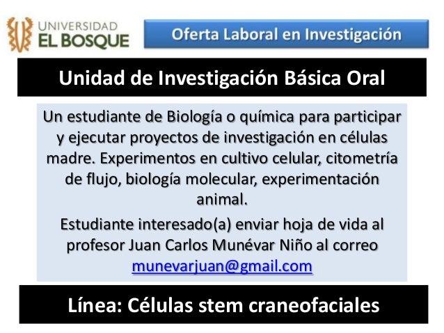 Unidad de Investigación Básica OralUn estudiante de Biología o química para participar y ejecutar proyectos de investigaci...