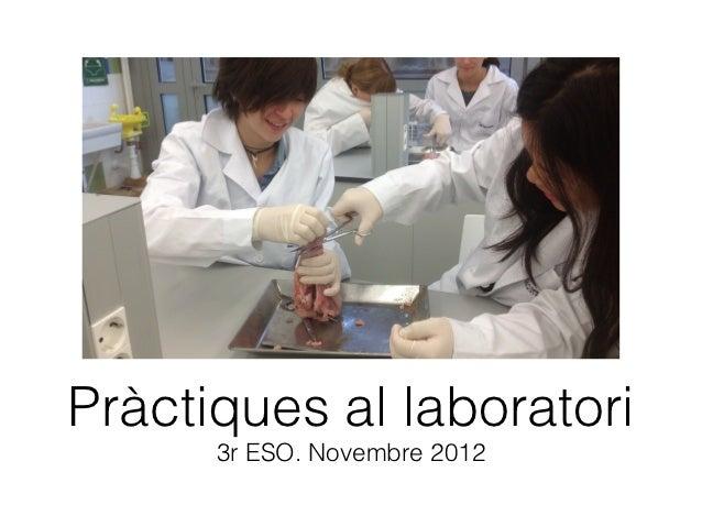 Pràctiques al laboratori 3r ESO. Novembre 2012