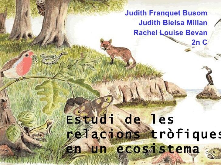Estudi de les relacions tròfiques en un ecosistema Judith Franquet Busom Judith Bielsa Millan Rachel Louise Bevan 2n   C
