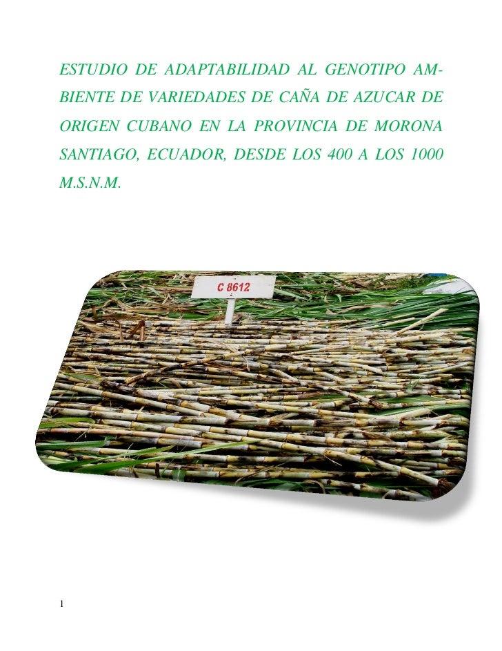 ESTUDIO DE ADAPTABILIDAD AL GENOTIPO AM-BIENTE DE VARIEDADES DE CAÑA DE AZUCAR DEORIGEN CUBANO EN LA PROVINCIA DE MORONASA...