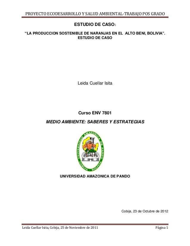 """PROYECTO ECODESARROLLO Y SALUD AMBIENTAL-TRABAJO POS GRADO                                   ESTUDIO DE CASO: """"LA PRODUCCI..."""