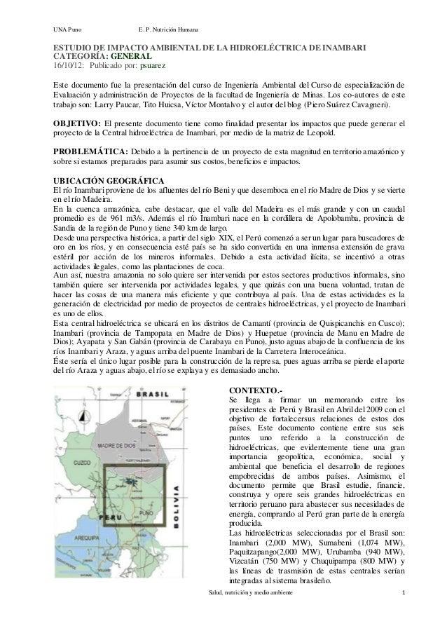 UNA Puno E. P. Nut rición Humana  ESTUDIO DE IMPACTO AMBIENTAL DE LA HIDROELÉCTRICA DE INAMBARI  CATEGORÍA: GENERAL  16/10...