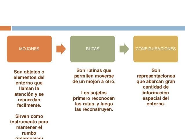 "Estudio de la cogniciã""n ambiental Slide 3"