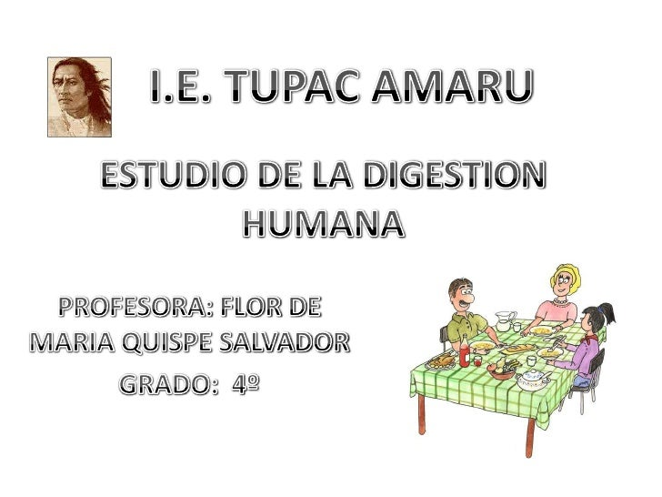 I.E. TUPAC AMARU<br />ESTUDIO DE LA DIGESTION HUMANA<br />PROFESORA: FLOR DE MARIA QUISPE SALVADOR<br />GRADO:  4º <br />