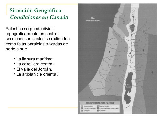 Situación Geográfica  Condiciones en CanaánPalestina se puede dividirtopográficamente en cuatrosecciones las cuales se ext...