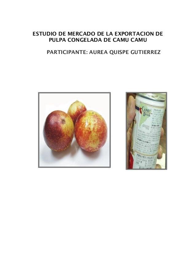 ESTUDIO DE MERCADO DE LA EXPORTACION DE PULPA CONGELADA DE CAMU CAMU PARTICIPANTE: AUREA QUISPE GUTIERREZ