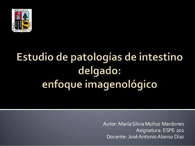 Autor: María Silvia Muñoz Mardones Asignatura: ESPE 202 Docente: JoséAntonio Alonso Díaz