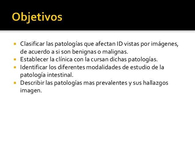 Estudio de patologías de intestino delgado Slide 2