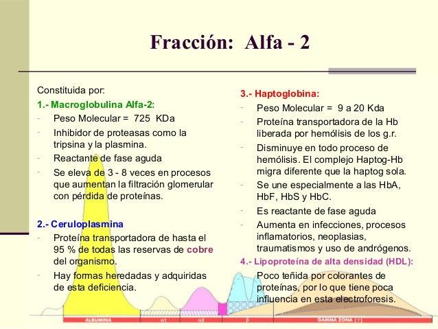 Fracción: Alfa - 2 Constituida por: 1.- Macroglobulina Alfa-2: - Peso Molecular = 725 KDa - Inhibidor de proteasas como la...