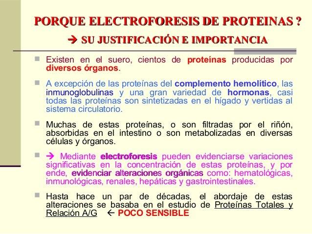 PORQUE ELECTROFORESIS DE PROTEINAS ?PORQUE ELECTROFORESIS DE PROTEINAS ?  SU JUSTIFICACIÓN E IMPORTANCIASU JUSTIFICACIÓN...