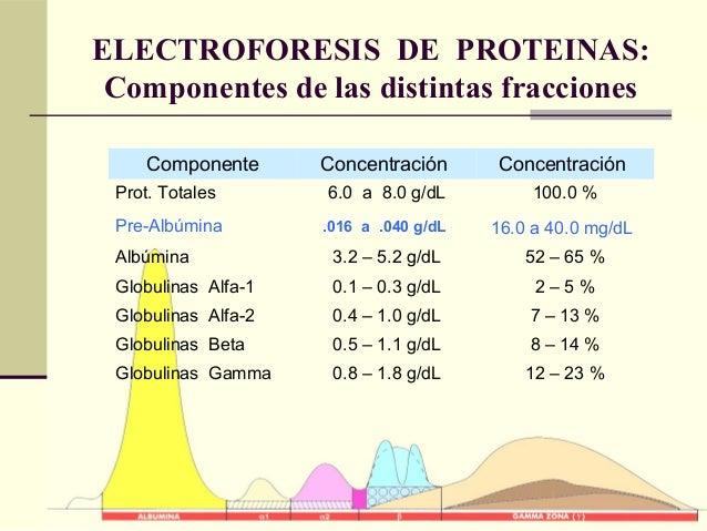 ELECTROFORESIS DE PROTEINAS: Componentes de las distintas fracciones Componente Concentración Concentración Prot. Totales ...