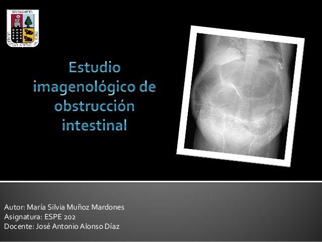 Autor: María Silvia Muñoz Mardones Asignatura: ESPE 202 Docente: José Antonio Alonso Díaz