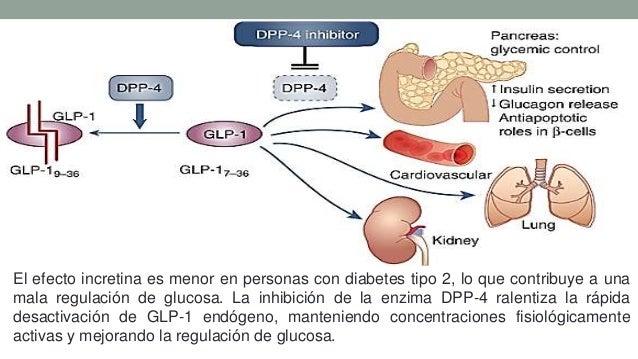 Estudio linagliptina