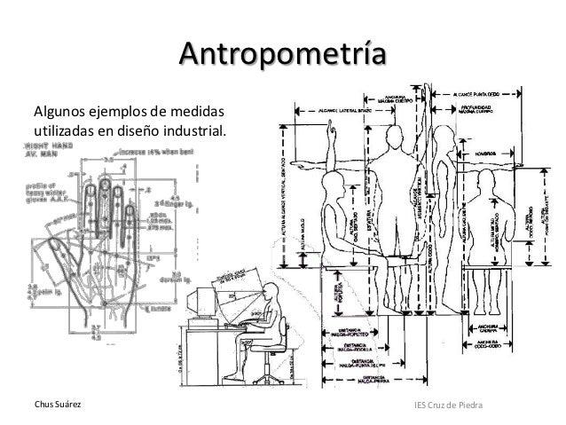 Estudio morfol gico de la figura y el rostro 3 parte for Antropometria estatica