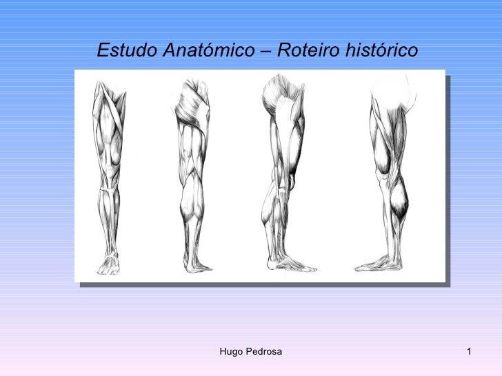 Estudo Anatómico – Roteiro histórico Hugo Pedrosa