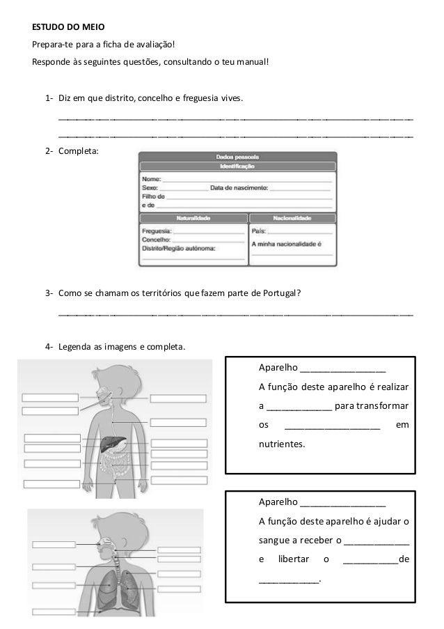 ESTUDO DO MEIO Prepara-te para a ficha de avaliação! Responde às seguintes questões, consultando o teu manual! 1- Diz em q...
