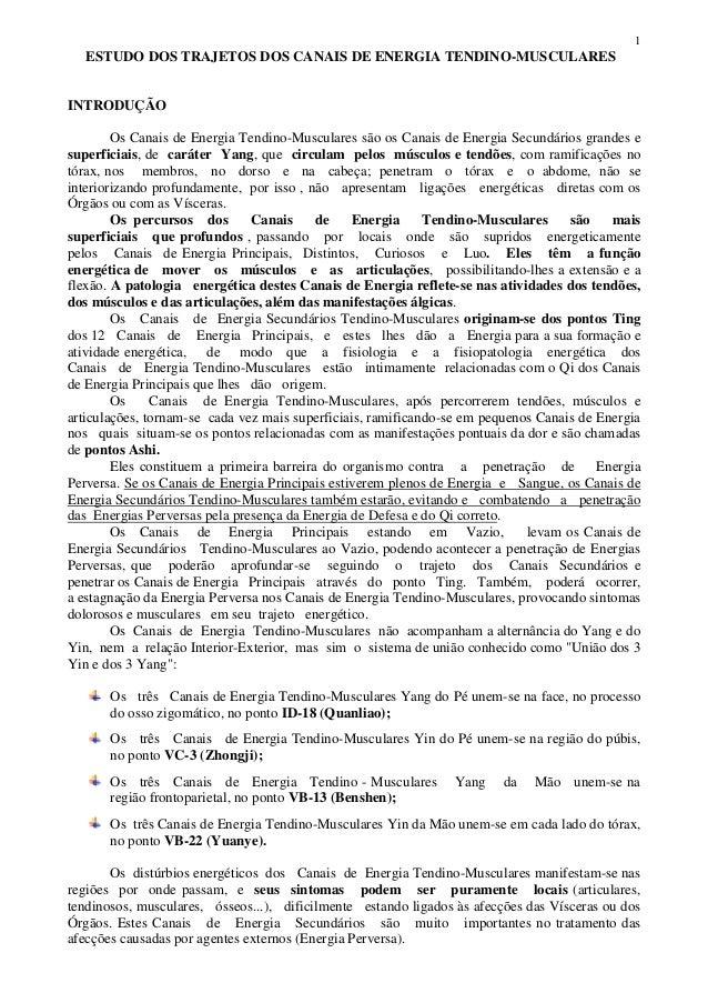 1   ESTUDO DOS TRAJETOS DOS CANAIS DE ENERGIA TENDINO-MUSCULARESINTRODUÇÃO        Os Canais de Energia Tendino-Musculares ...