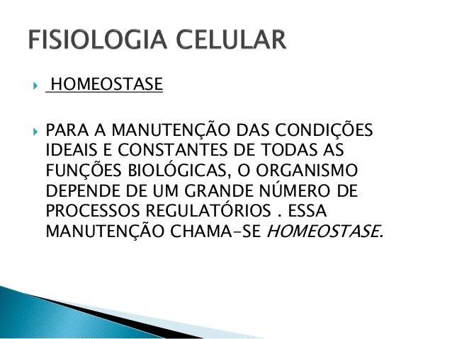 Estudos biológicos aplicados a educação física slides Slide 3