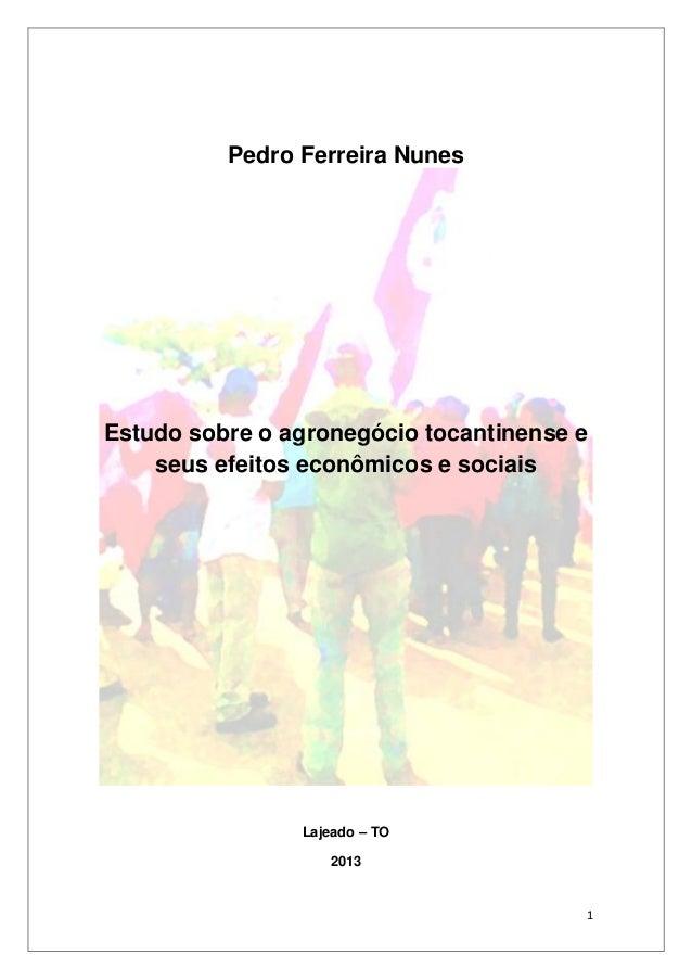 Pedro Ferreira Nunes  Estudo sobre o agronegócio tocantinense e seus efeitos econômicos e sociais  Lajeado – TO 2013  1