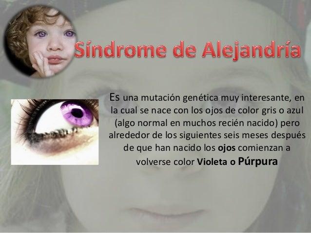 SINDROME DE ALEJANDRIA EBOOK DOWNLOAD