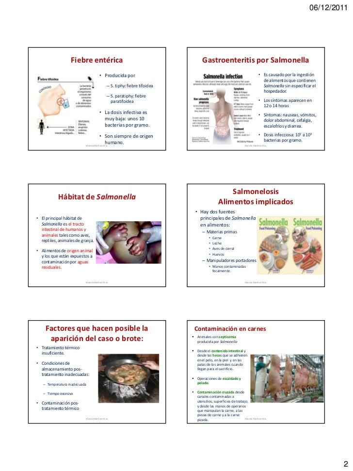 06/12/2011                  Fiebre entérica                                                  Gastroenteritis por Salmonell...