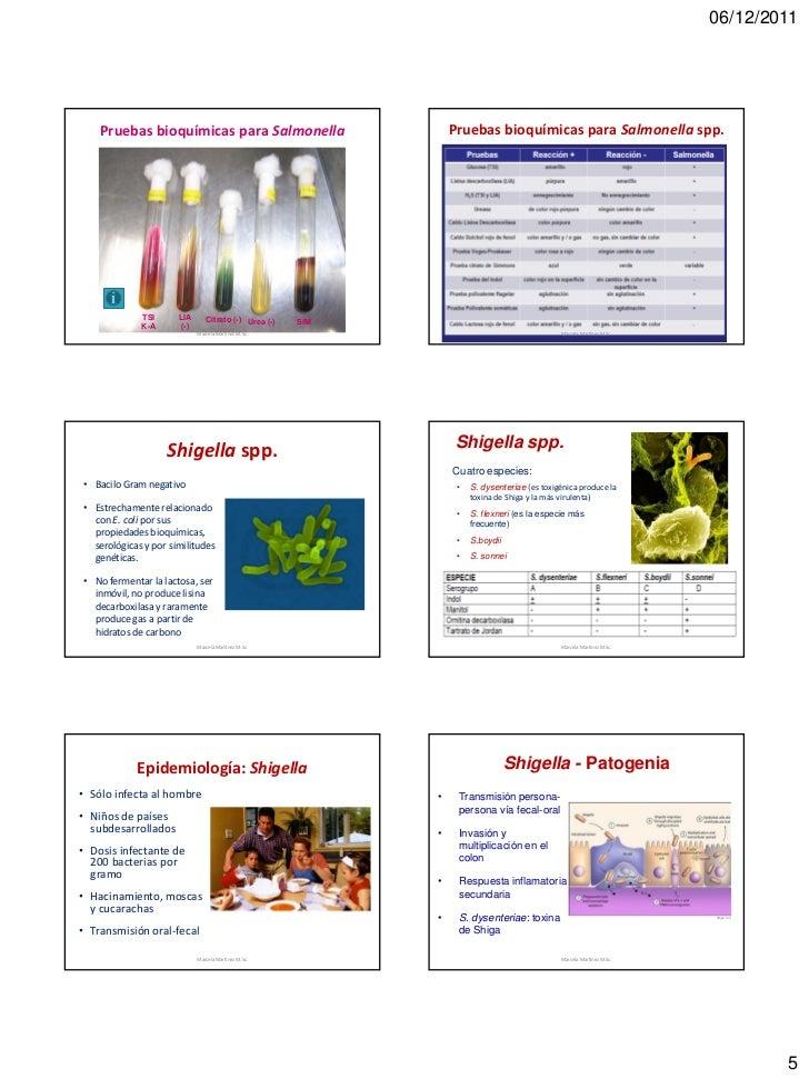 06/12/2011    Pruebas bioquímicas para Salmonella                         Pruebas bioquímicas para Salmonella spp.        ...