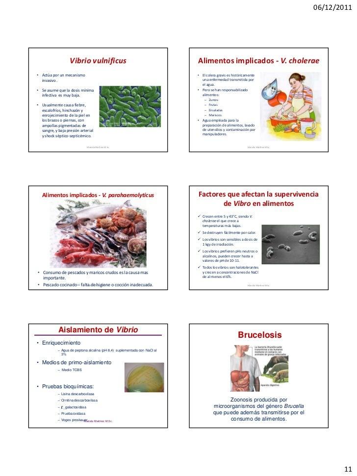 06/12/2011                    Vibrio vulnificus                                      Alimentos implicados - V. cholerae• A...