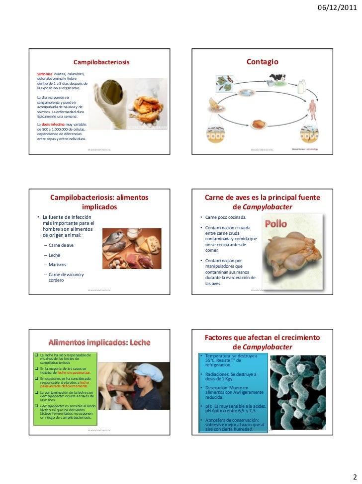 06/12/2011                        Campilobacteriosis                                            Contagio Síntomas: diarrea...