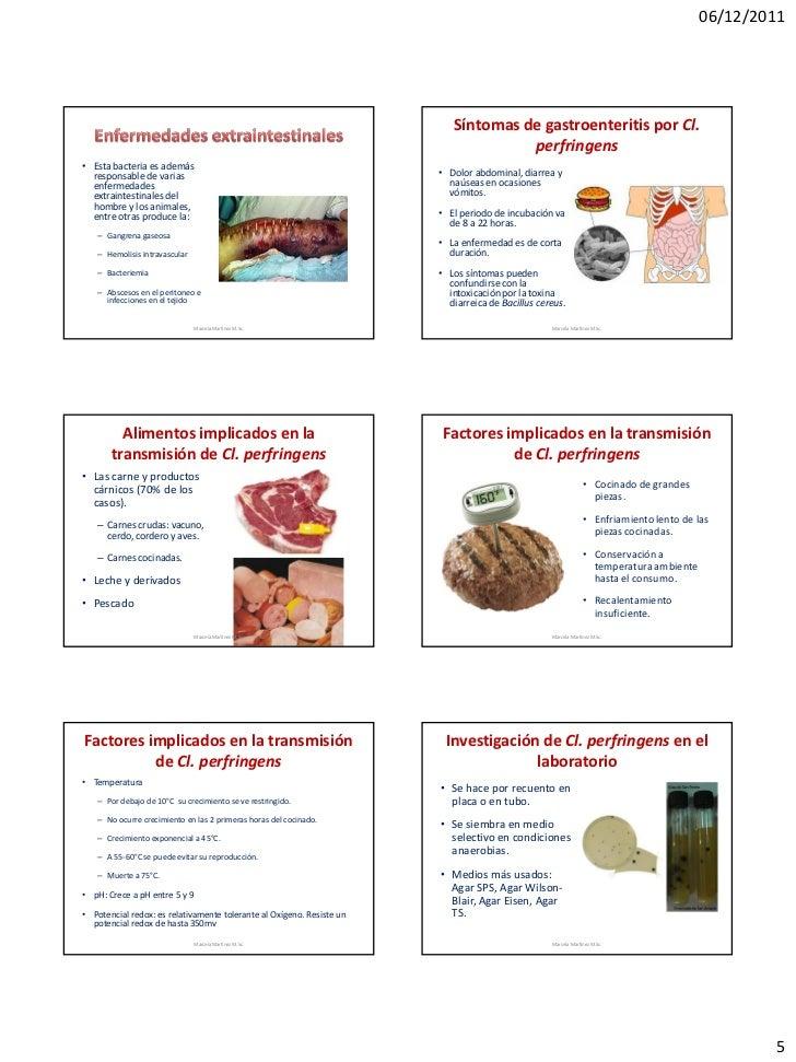 06/12/2011                                                                          Síntomas de gastroenteritis por Cl.   ...