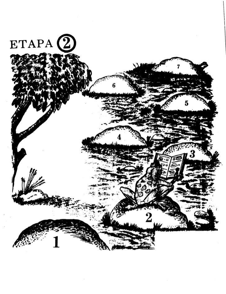 ETAPA(g)     1