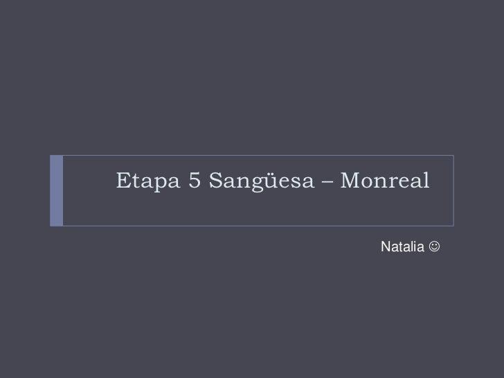 Etapa 5 Sangüesa – Monreal                     Natalia 