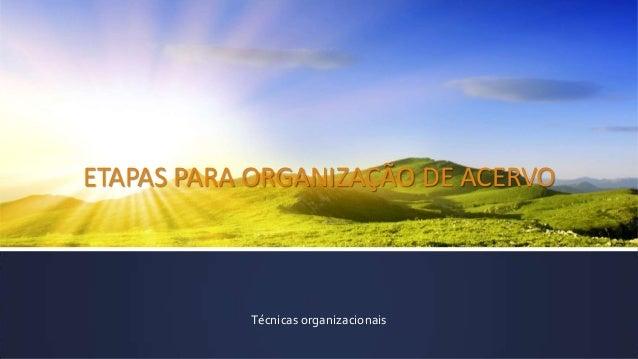 ETAPAS PARA ORGANIZAÇÃO DE ACERVO Técnicas organizacionais