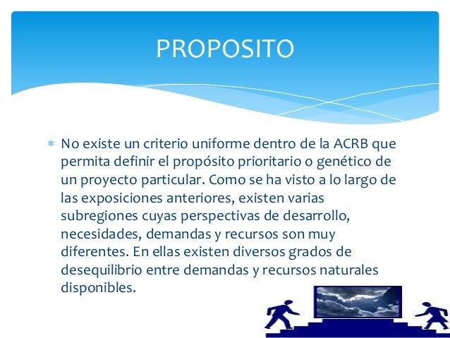  No existe un criterio uniforme dentro de la ACRB quepermita definir el propósito prioritario o genético deun proyecto pa...