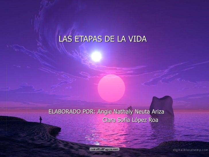 LAS ETAPAS DE LA VIDA ELABORADO POR: Angie Nathaly Neuta Ariza Clara Sofía López Roa