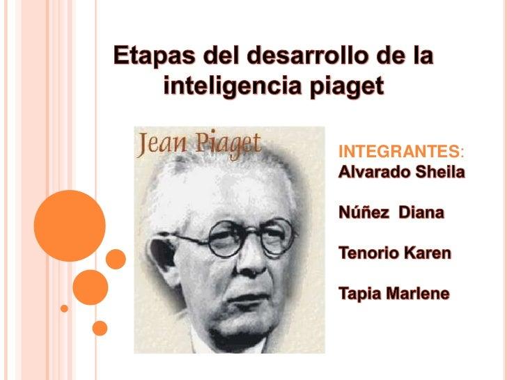 Etapas del desarrollo de la inteligencia piaget <br />INTEGRANTES:<br />Alvarado Sheila<br />Núñez  Diana<br />Tenorio Kar...