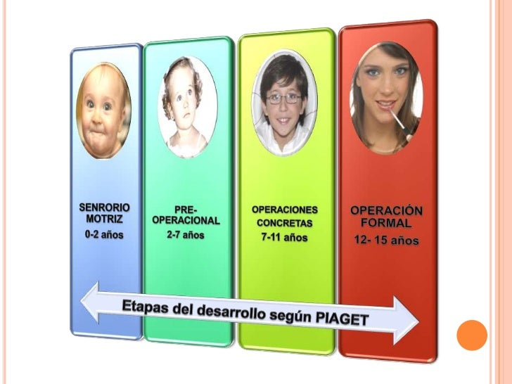 Etapas del desarrollo según PIAGET <br />