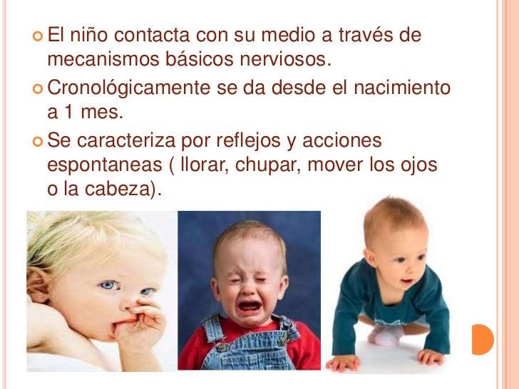 El niño contacta con su medio a través de mecanismos básicos nerviosos.<br />Cronológicamente se da desde el nacimiento a ...