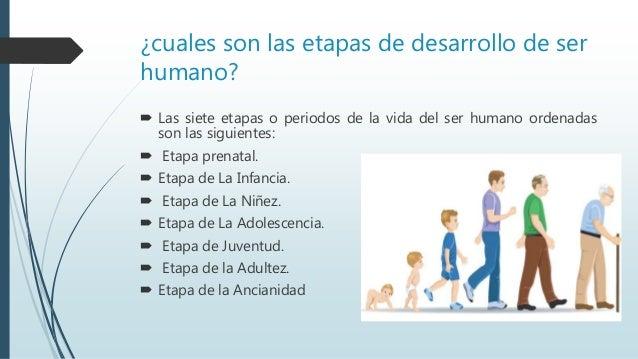 e407e8347 Etapas del desarrollo del ser humano