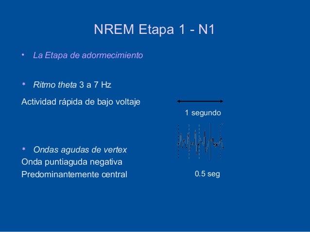 NREM Etapa 1 - N1•   La Etapa de adormecimiento   Ritmo theta 3 a 7 HzActividad rápida de bajo voltaje                   ...