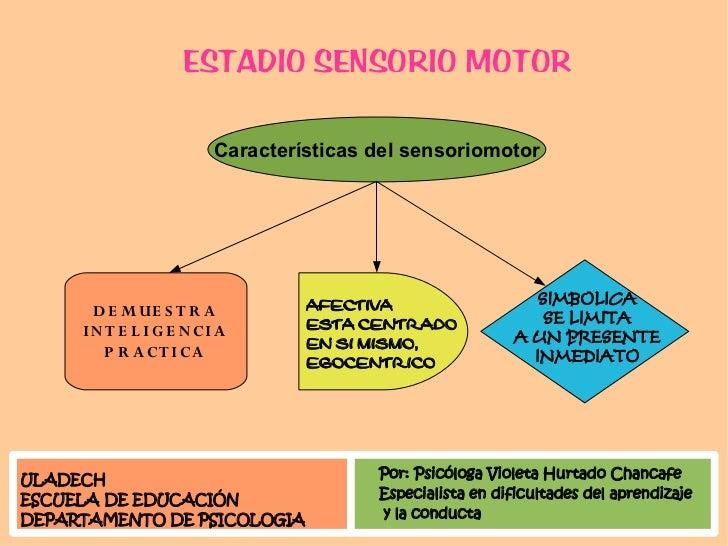 ESTADIO SENSORIO MOTOR                           Características del sensoriomotor                                        ...